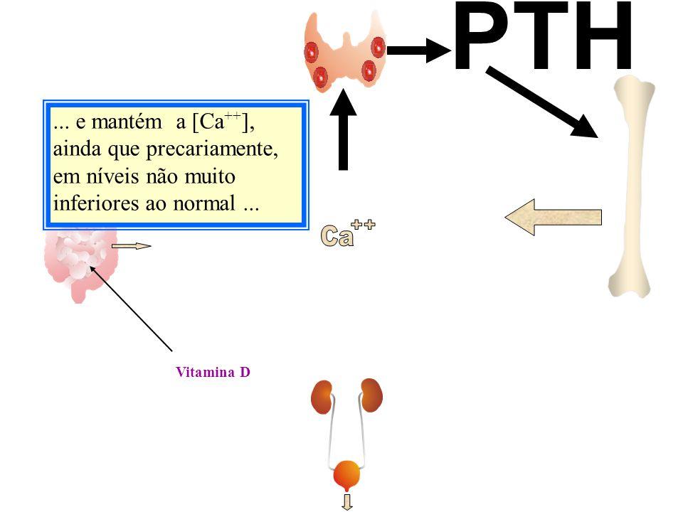 PTH ... e mantém a [Ca++], ainda que precariamente, em níveis não muito inferiores ao normal ... Ca.